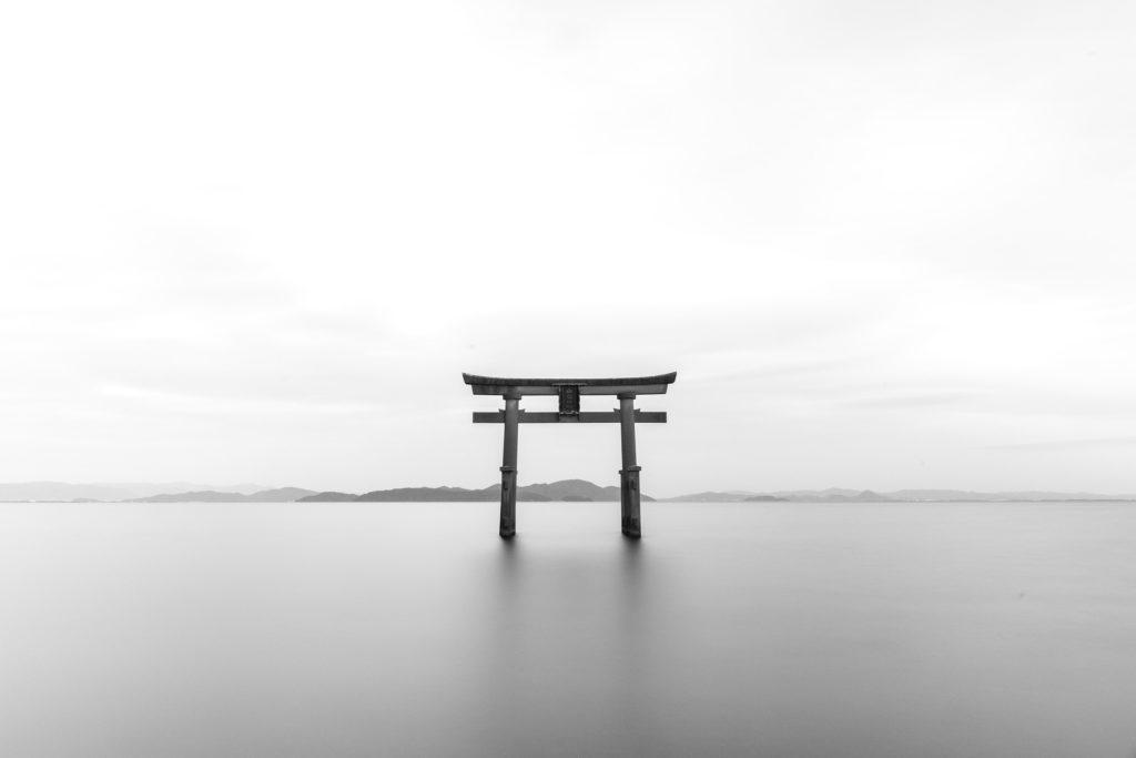 torii zen